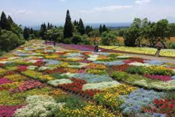 Taman Bunga Di Jepang